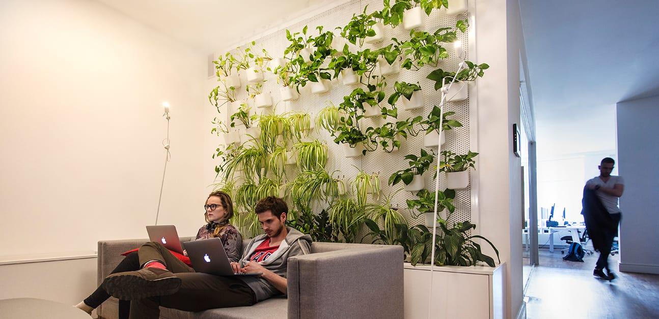 Monterail office